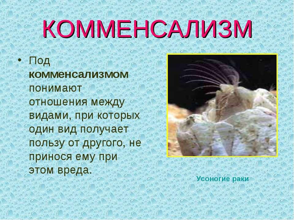 КОММЕНСАЛИЗМ Под комменсализмом понимают отношения между видами, при которых ...