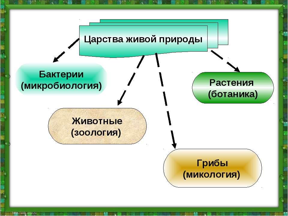 Как сделать вертикальную надпись в фотошоп