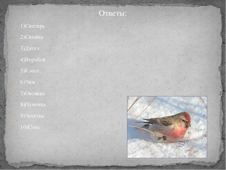 Ответы: 1)Снегирь 2)Синица 3)Дятел 4)Воробей 5)Клёст 6)Чиж 7)Овсянка 8)Пуночк...