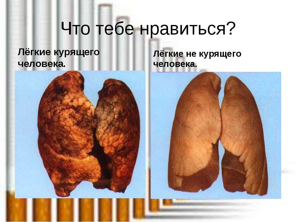 Что тебе нравиться? Лёгкие курящего человека. Лёгкие не курящего человека.