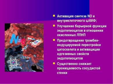 Активация синтеза NO и внутриклеточного цАМФ; Улучшение барьерной функции энд...