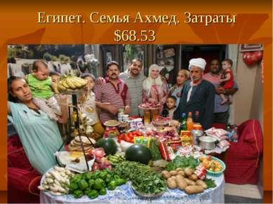 Египет. Семья Ахмед. Затраты $68.53