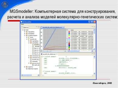 MGSmodeller: Компьютерная система для конструирования, расчета и анализа моде...