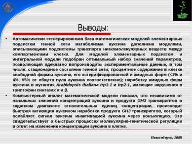 Новосибирск, 2008 Автоматически сгенерированная база математических моделей э...