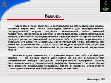 Новосибирск, 2008 Разработана пространственно-распределённая математическая м...