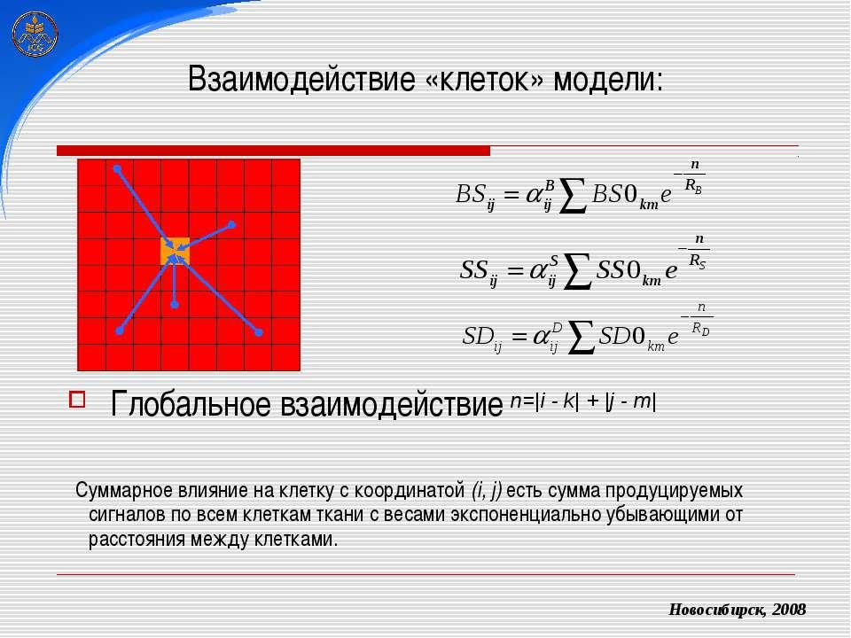 Взаимодействие «клеток» модели: Глобальное взаимодействие Новосибирск, 2008 С...