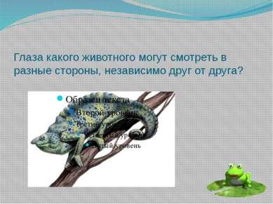 Что позволяет змее заглатывать добычу живьем?