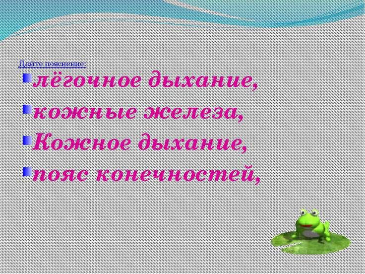 Назовите стадии развития лягушки. В чем сходство развития лягушки и рыбы?