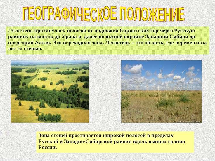 Лесостепь протянулась полосой от подножия Карпатских гор через Русскую равнин...