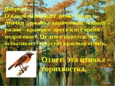 Вопрос 5. О какой птице идёт речь? Грудь у птички – ржано – коричневая. А хво...