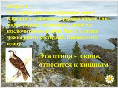 Вопрос 1. Эта птица занесена в Красную книгу Карелии и относится к редким вид...