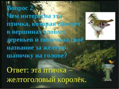 Вопрос 2 Чем интересна эта птичка, которая обитает в вершинах еловых деревьев...