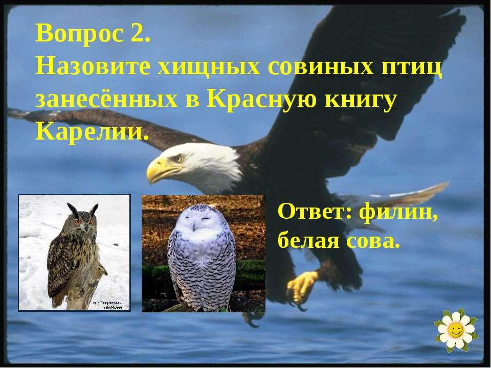 Вопрос 2. Назовите хищных совиных птиц занесённых в Красную книгу Карелии. От...