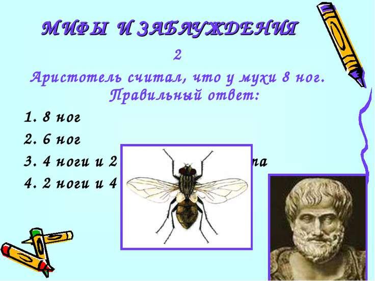 2 Аристотель считал, что у мухи 8 ног. Правильный ответ: 1. 8 ног 2. 6 ног 3....
