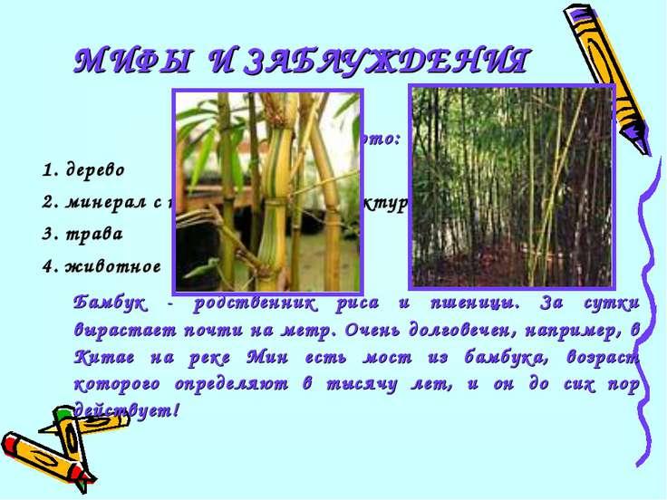 22 Бамбук это: 1. дерево 2. минерал с кольцевой моноструктурой 3. трава 4. жи...