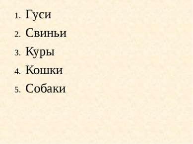 Гуси Свиньи Куры Кошки Собаки