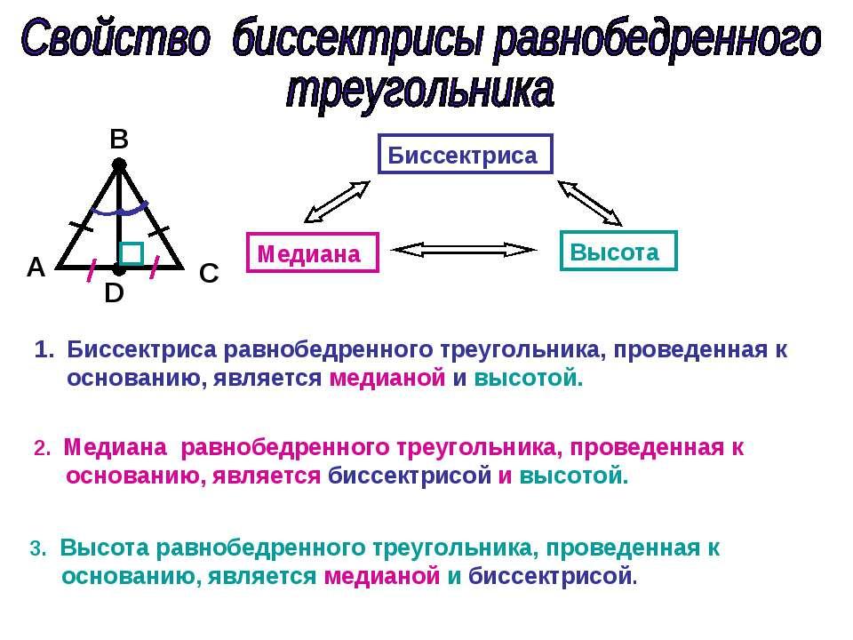 A С D B Биссектриса Медиана Высота Биссектриса равнобедренного треугольника, ...