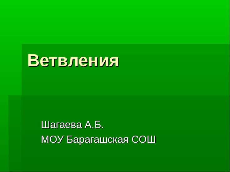 Ветвления Шагаева А.Б. МОУ Барагашская СОШ