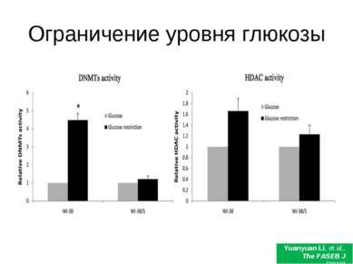 Ограничение уровня глюкозы Yuanyuan Li, et al., The FASEB J (2010)