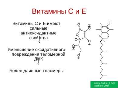 Витамины C и E Витамины С и Е имеют сильные антиоксидантные свойства Уменьшен...