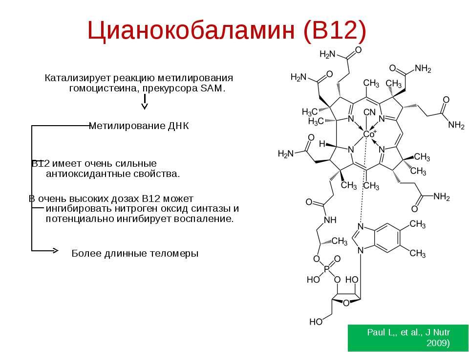 Цианокобаламин (B12) Катализирует реакцию метилирования гомоцистеина, прекурс...