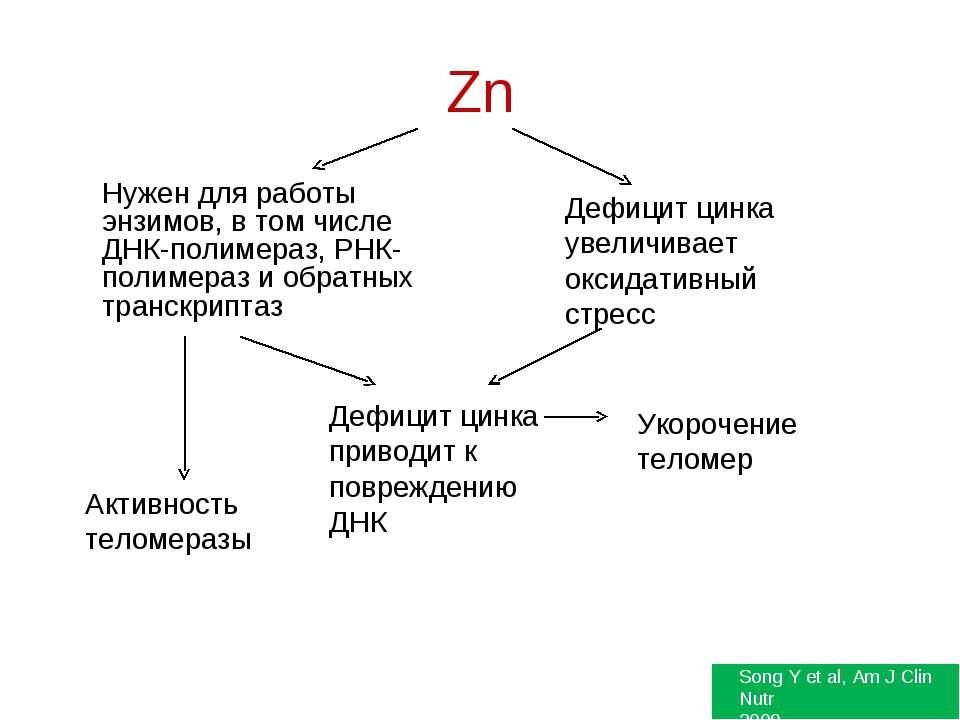Zn Нужен для работы энзимов, в том числе ДНК-полимераз, РНК-полимераз и обрат...