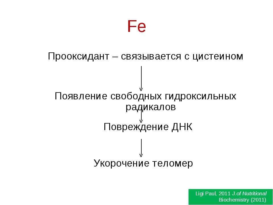 Fe Прооксидант – связывается с цистеином Появление свободных гидроксильных ра...
