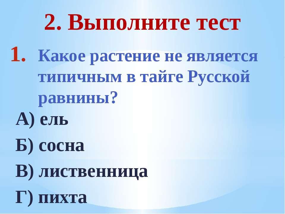 Какое растение не является типичным в тайге Русской равнины? А) ель Б) сосна ...