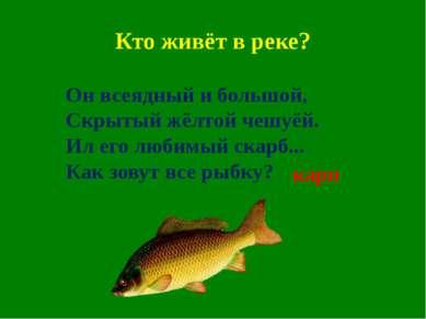 Кто живёт в реке? Он всеядный и большой, Скрытый жёлтой чешуёй. Ил его любимы...