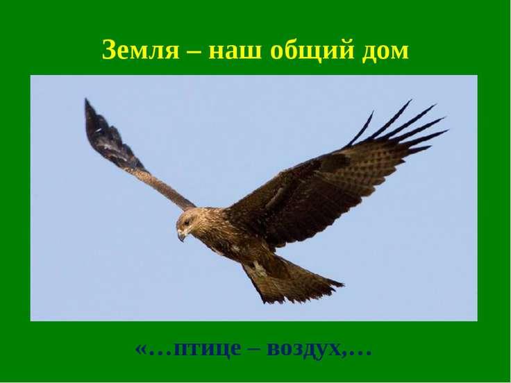 Земля – наш общий дом «…птице – воздух,…