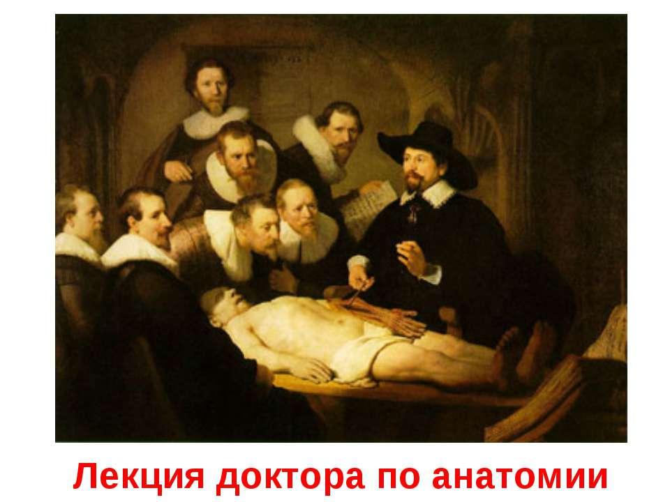 Лекция доктора по анатомии