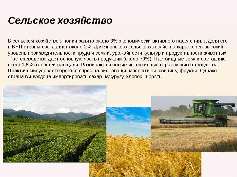 Сельское хозяйство   В сельском хозяйстве Японии занято около 3% экономичес...