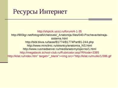 Ресурсы Интернет http://shpicik.ucoz.ru/forum/4-1-35 http://900igr.net/fotogr...