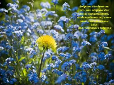 Доброта для души то же, что здоровье для тела: она незаметна, когда владеешь ...
