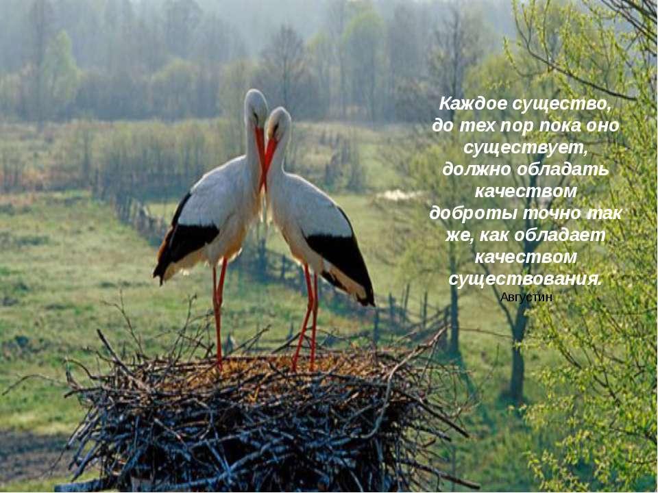 Каждое существо, до тех пор пока оно существует, должно обладать качеством до...