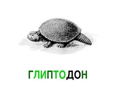 ГЛИПТОДОН