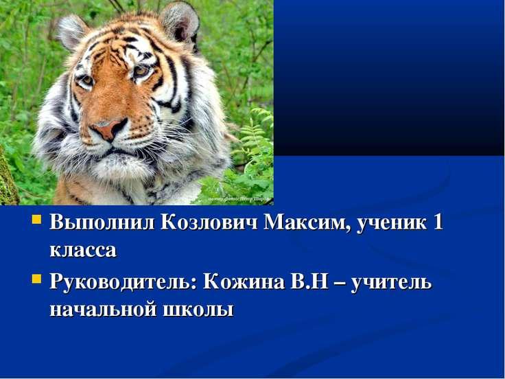 Выполнил Козлович Максим, ученик 1 класса Руководитель: Кожина В.Н – учитель ...