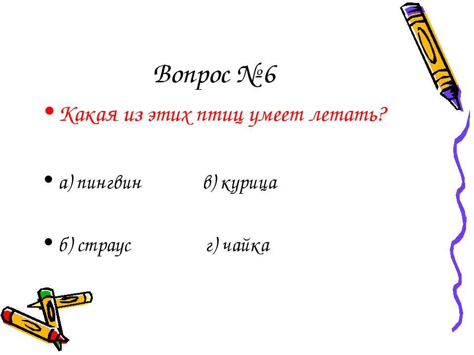 Вопрос № 6 Какая из этих птиц умеет летать? а) пингвин в) курица б) страус г)...