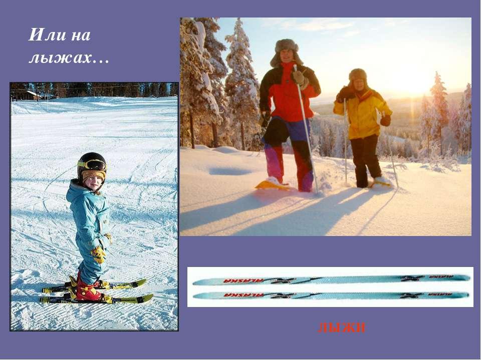 Или на лыжах… ЛЫЖИ