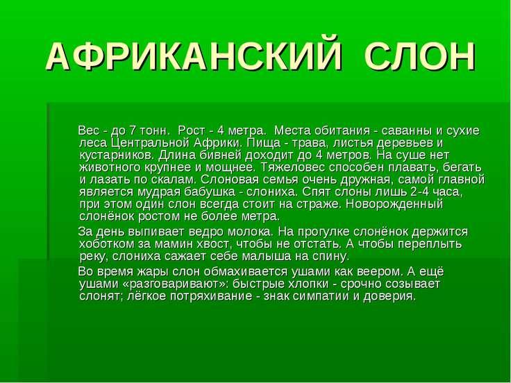 АФРИКАНСКИЙ СЛОН Вес - до 7 тонн. Рост - 4 метра. Места обитания - саванны и ...