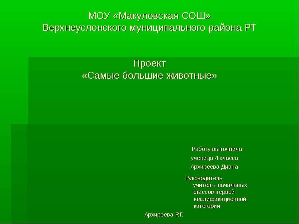 МОУ «Макуловская СОШ» Верхнеуслонского муниципального района РТ Проект «Самые...