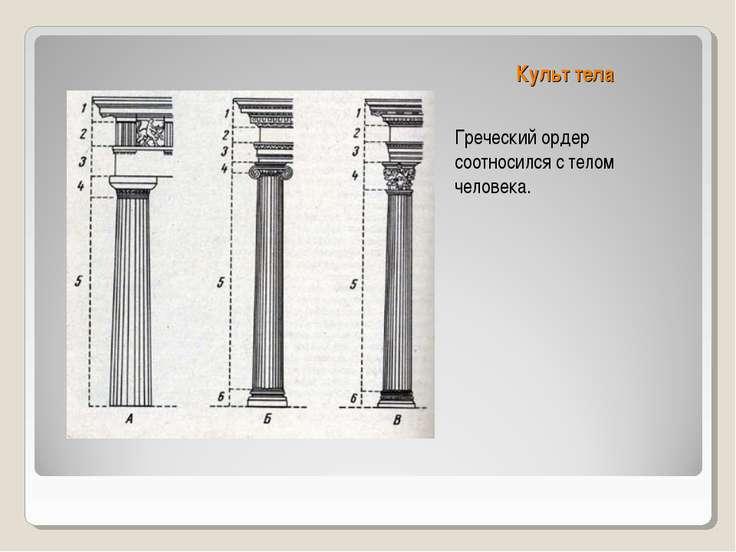 Культ тела Греческий ордер соотносился с телом человека.