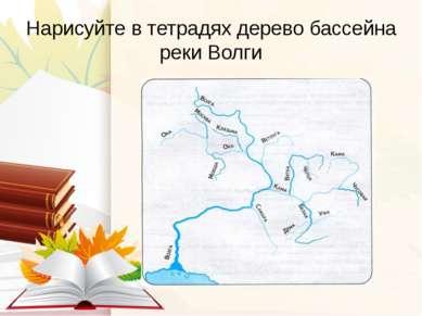 Нарисуйте в тетрадях дерево бассейна реки Волги
