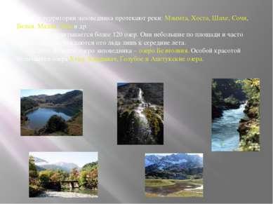 По территории заповедника протекают реки: Мзымта, Хоста, Шахе, Сочи, Белая, М...