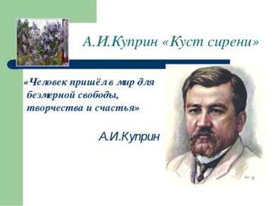А.И.Куприн «Куст сирени» «Человек пришёл в мир для безмерной свободы, творчес...