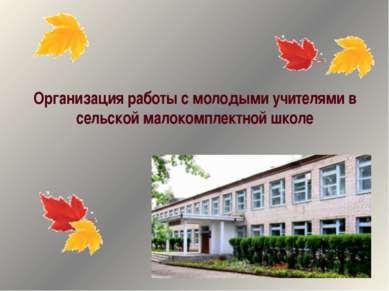 Организация работы с молодыми учителями в сельской малокомплектной школе