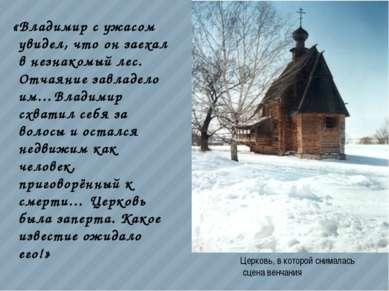«Владимир с ужасом увидел, что он заехал в незнакомый лес. Отчаяние завладело...