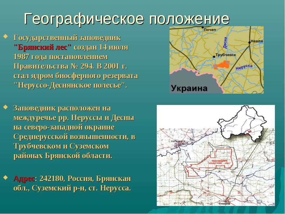 """Географическое положение Государственный заповедник """"Брянский лес"""" создан 14 ..."""