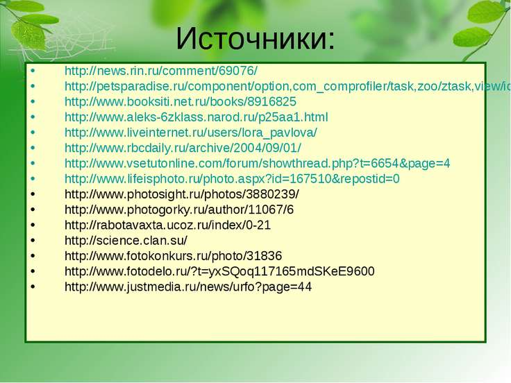 Источники: http://news.rin.ru/comment/69076/ http://petsparadise.ru/component...