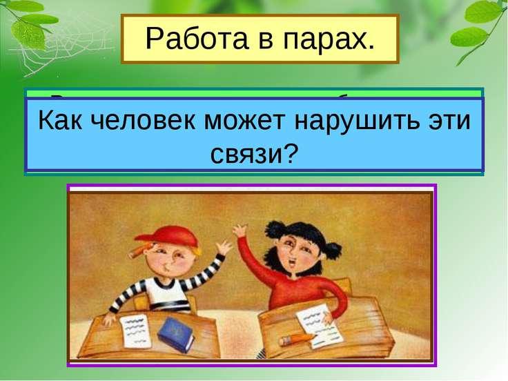 Работа в парах. Рассмотрите рисунки в учебнике на стр.55, приведите примеры с...